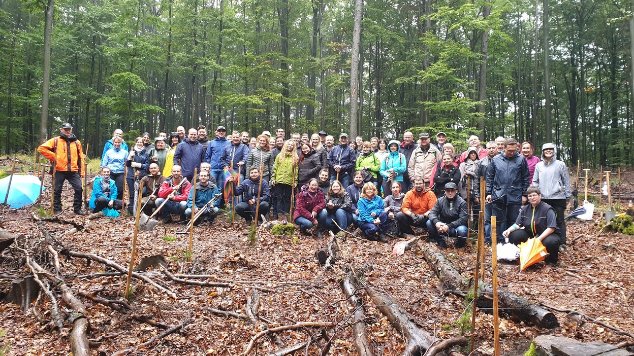 Planting 170 trees in Germany